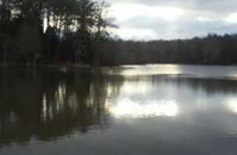 Lovely, winter glimpse of your fishing spot!
