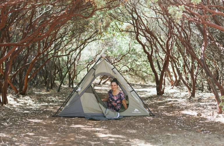 camp under the manzanitas!