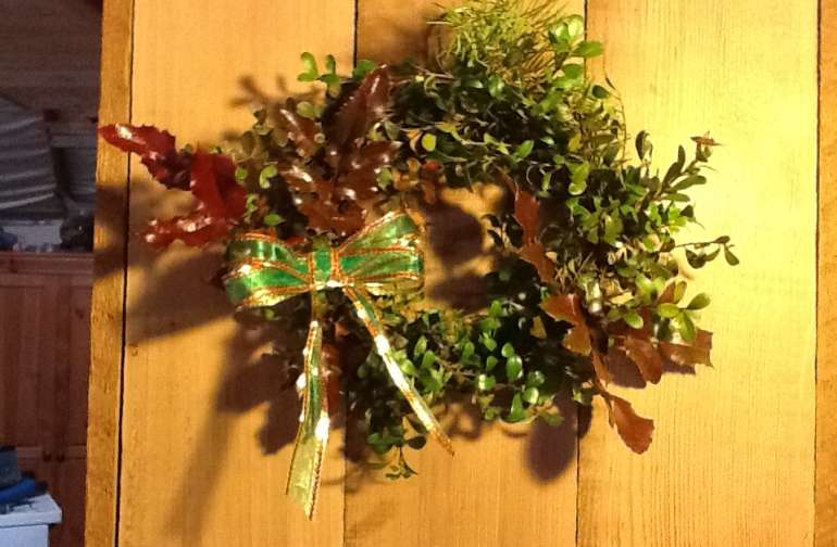 Forage for holiday wreaths
