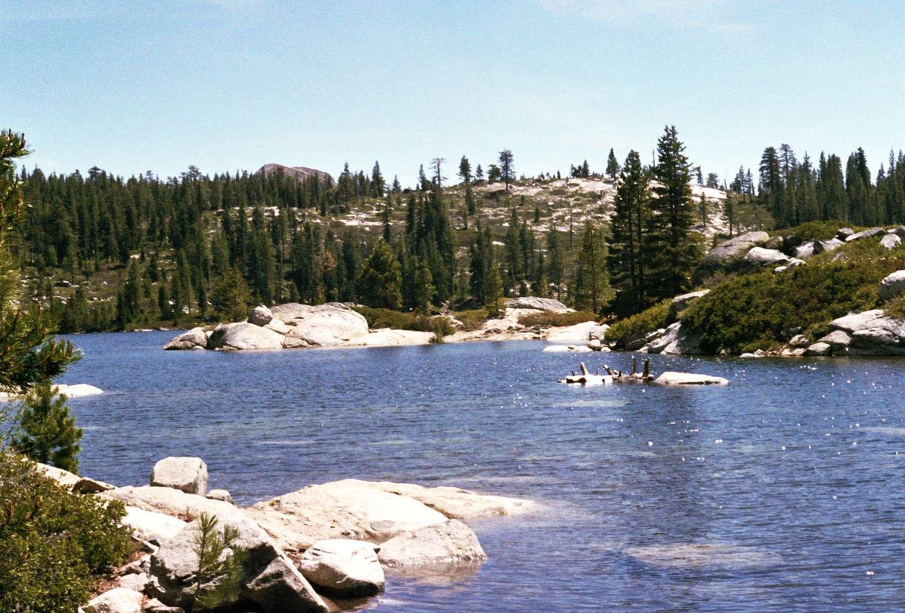 Loon Lake Campground, Eldorado, CA: 5 Hipcamper Reviews And 9 Photos