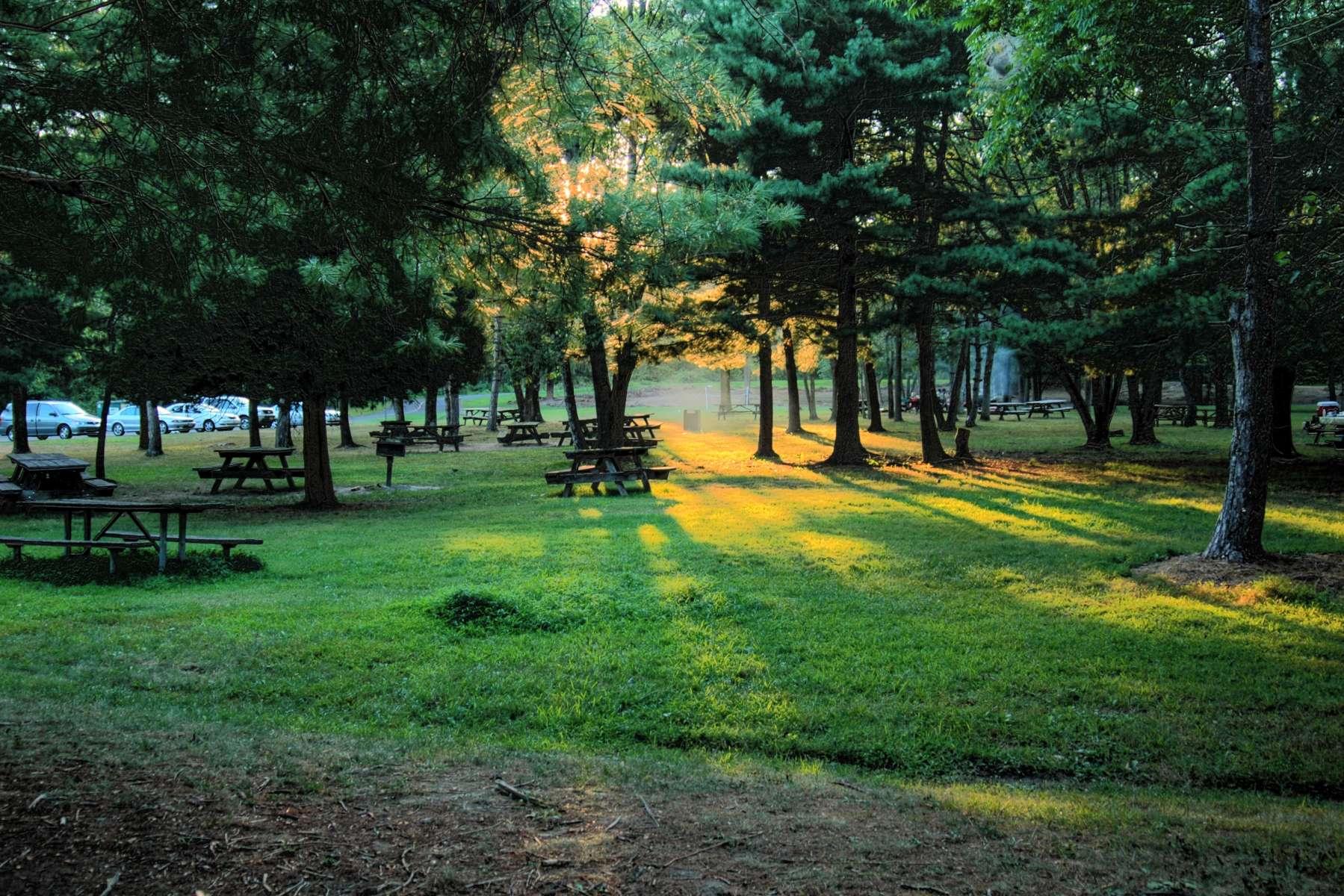 Nockamixon Park Campground, Nockamixon Park, PA: 5 Photos