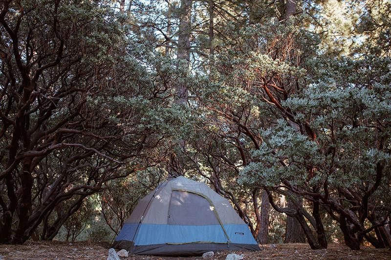 Idyllwild Campground, Mount San Jacinto, CA: 8 Hipcamper