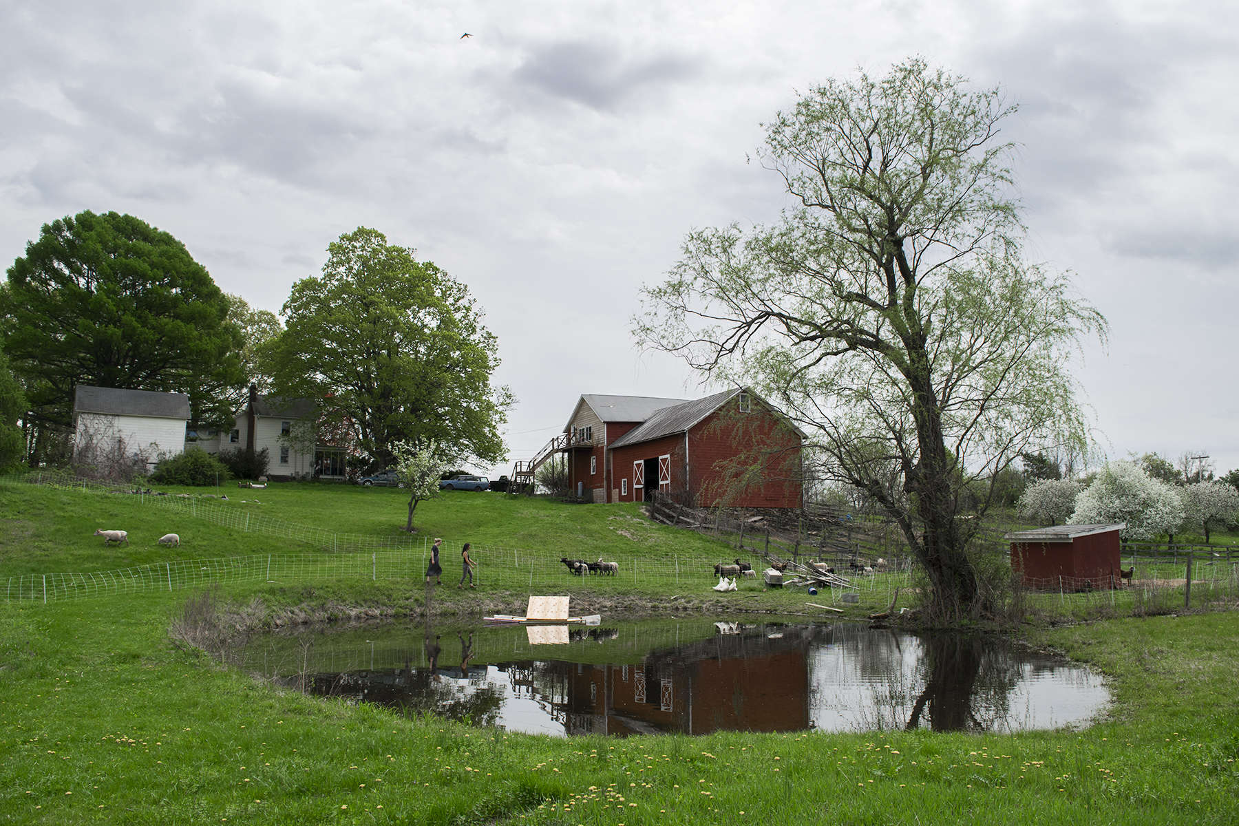 Gatherwild Ranch RV & Tent Site