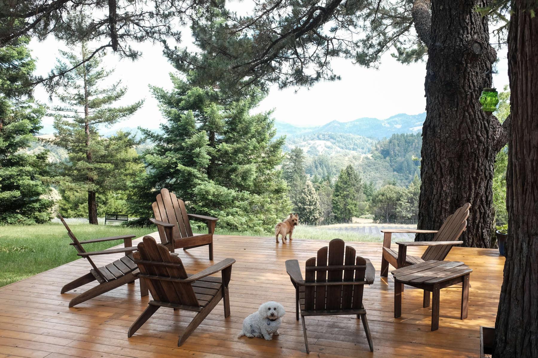 Admirable Glamping Tents Vistas Stars Machost Co Dining Chair Design Ideas Machostcouk