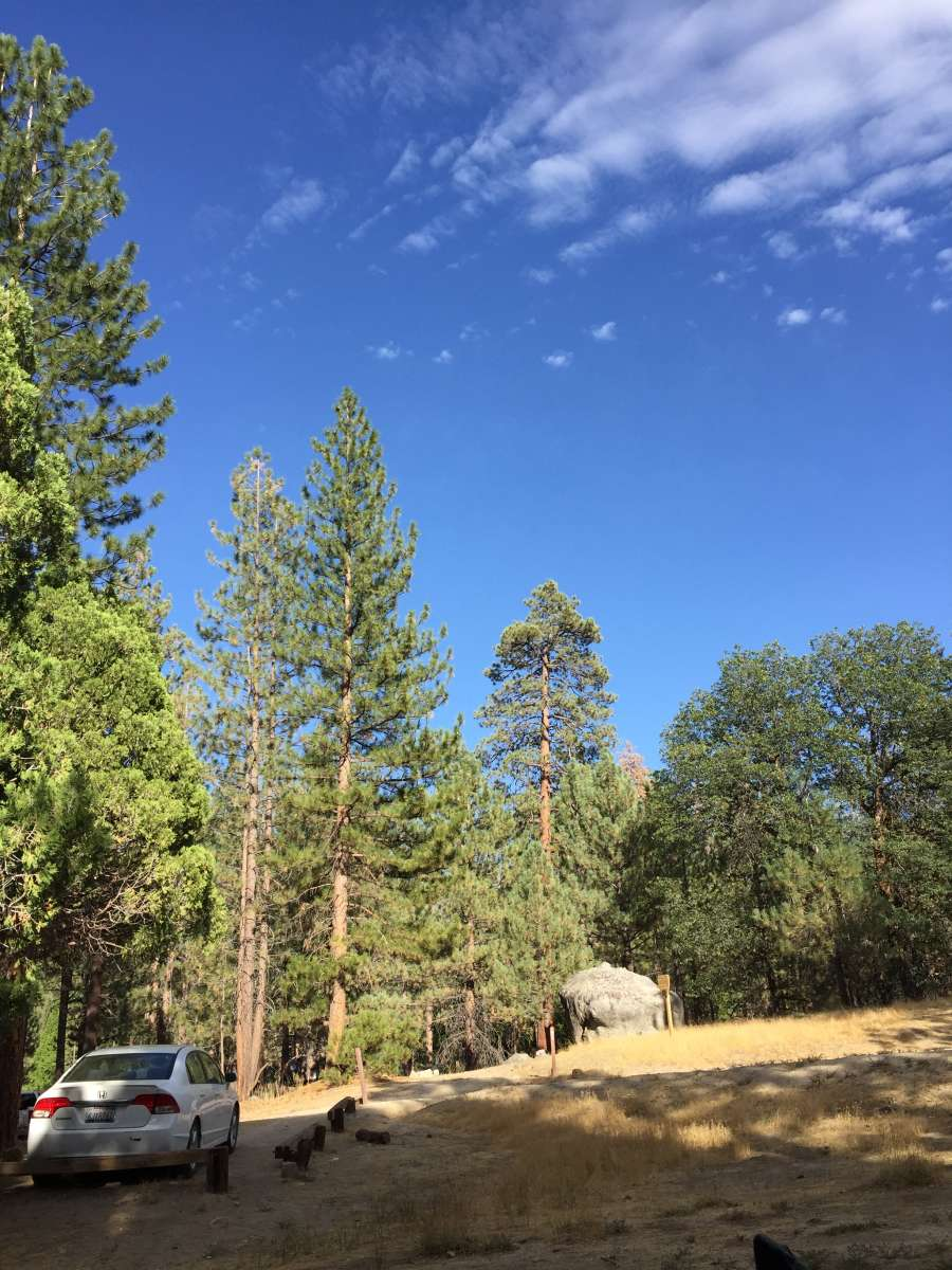 Lower Peppermint Campground, Sequoia Forest, CA: 4 Hipcamper Reviews