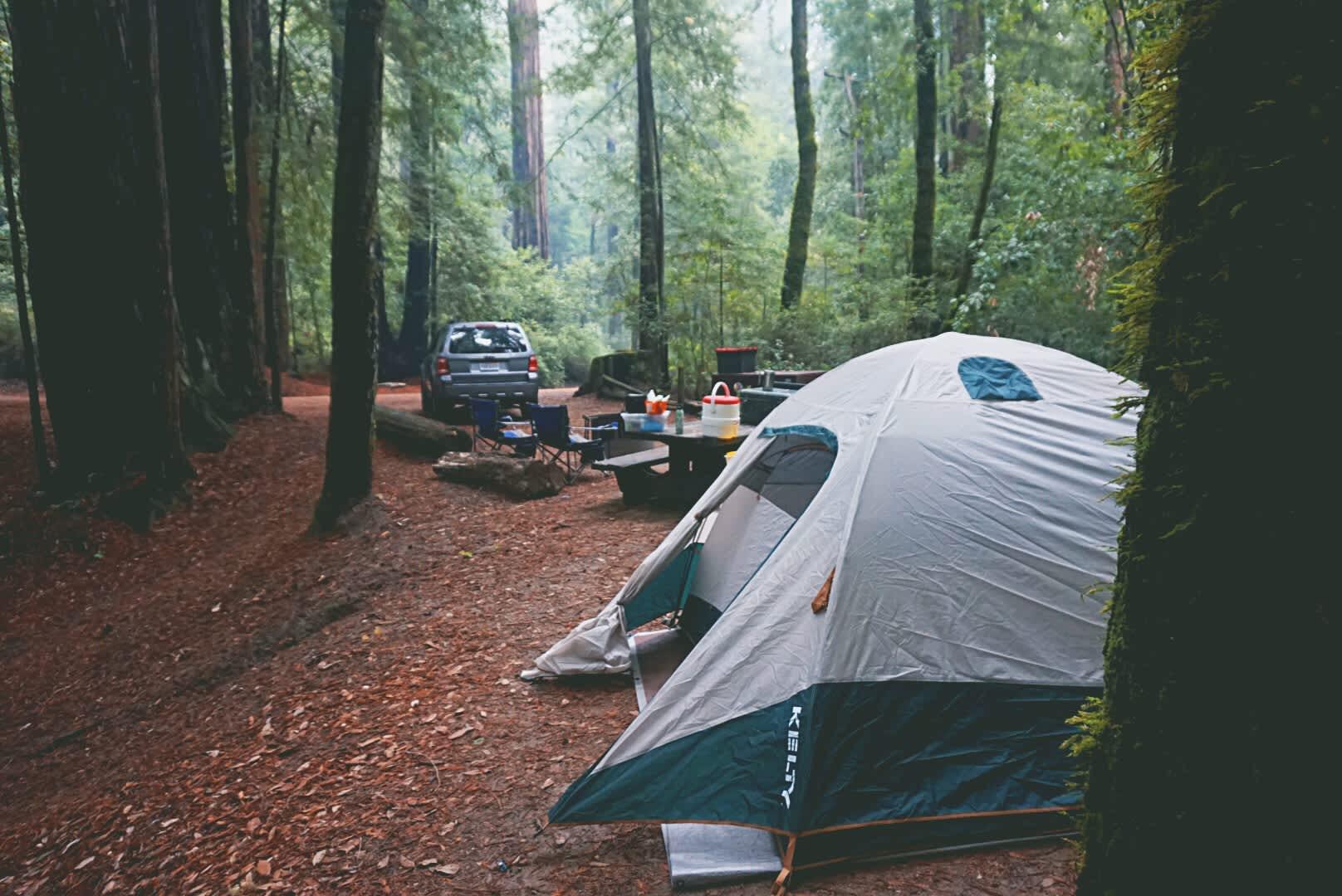 Huckleberry Campground, Big Basin Redwoods, CA: 15 Hipcamper Reviews ...