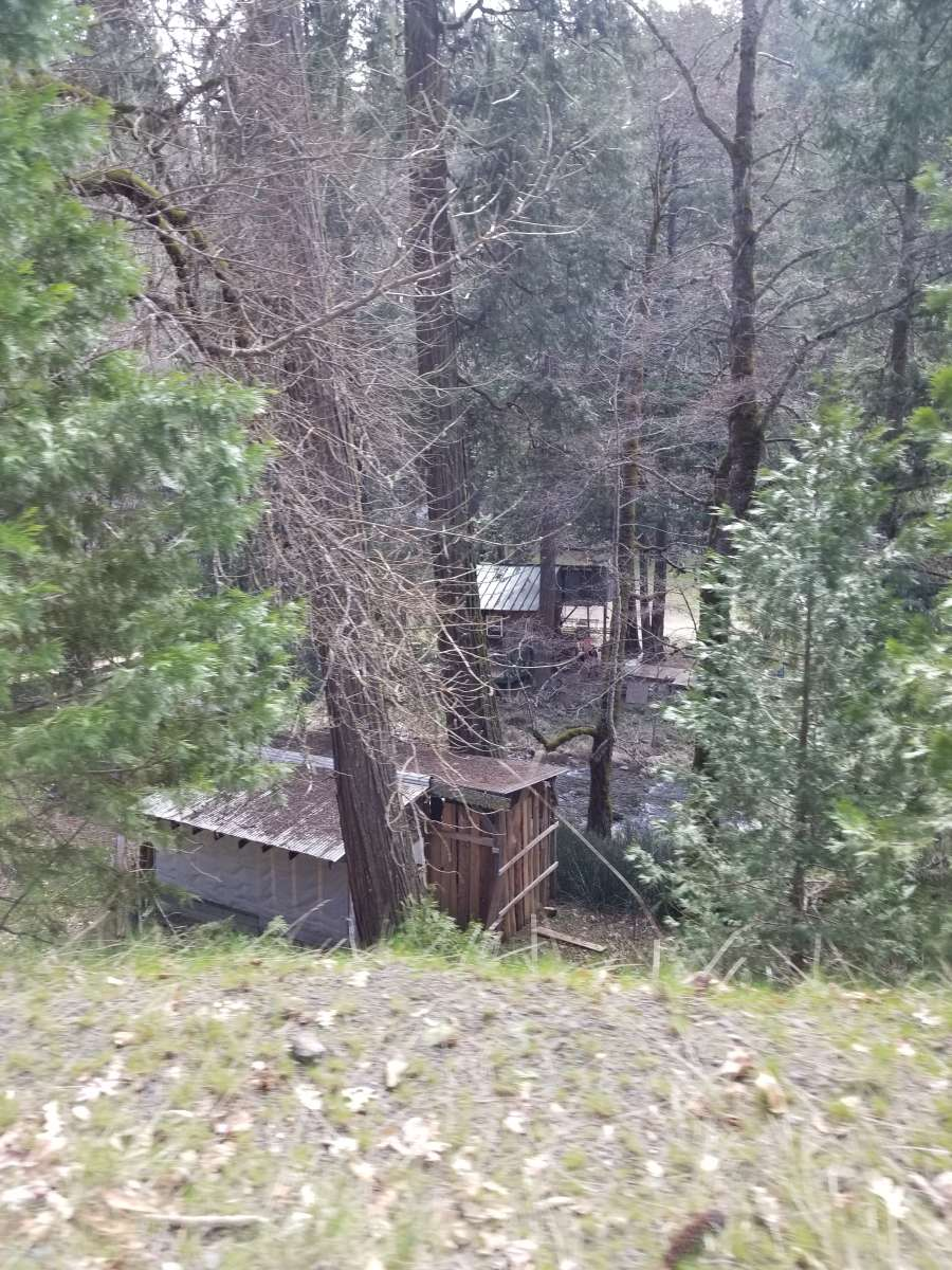 KRISTINA: Deer lick springs resort