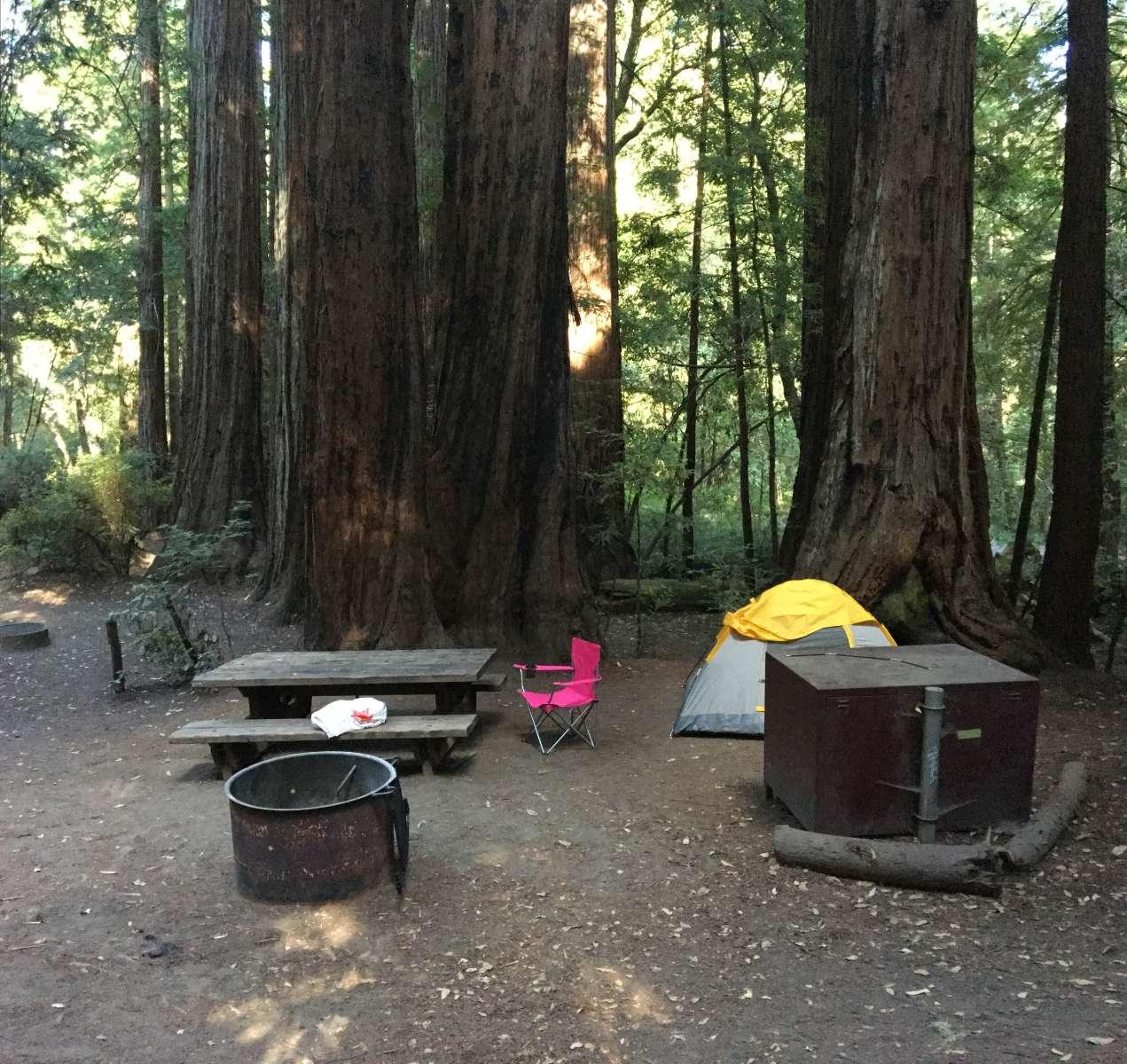Wastahi Campground, Big Basin Redwoods, CA: 3 Hipcamper ...