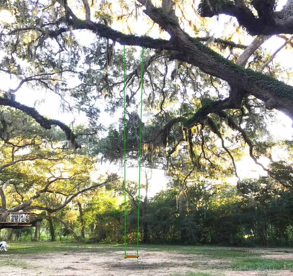Woodlands antebellum swinger