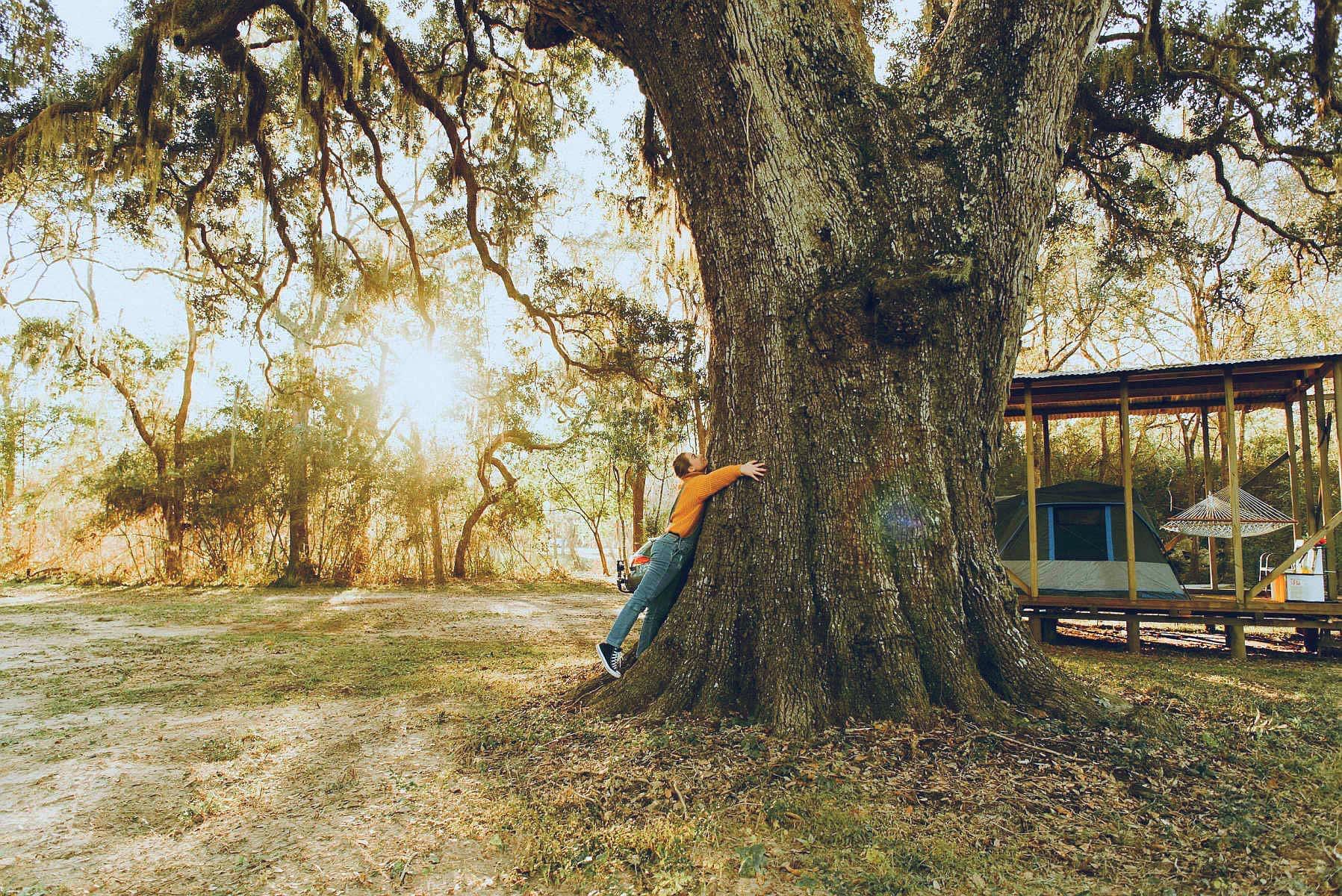 Woodlands antebellum swinger consider, that