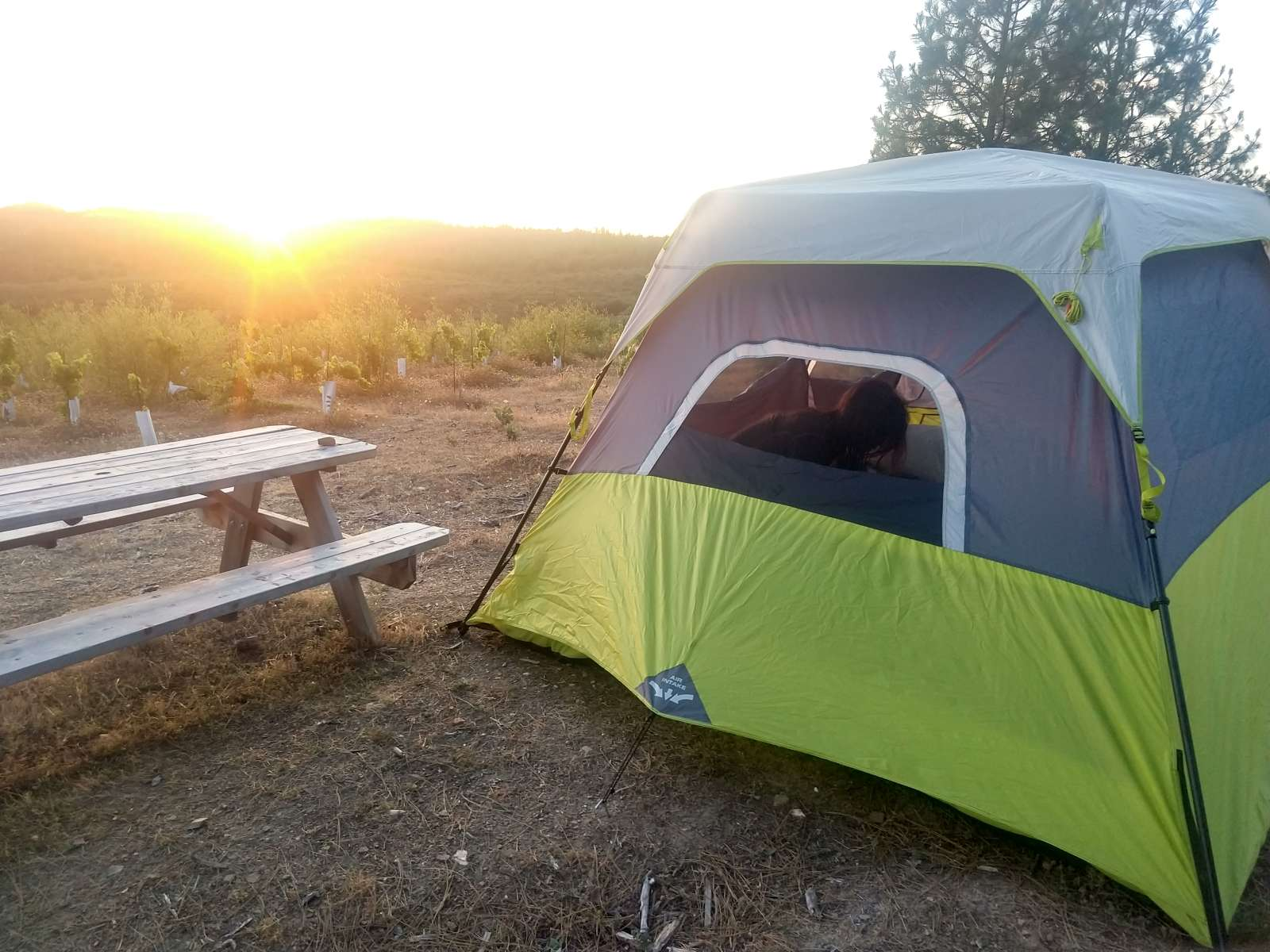 Pleasing Yosemite Garden Camp Tent Site 2 Alphanode Cool Chair Designs And Ideas Alphanodeonline