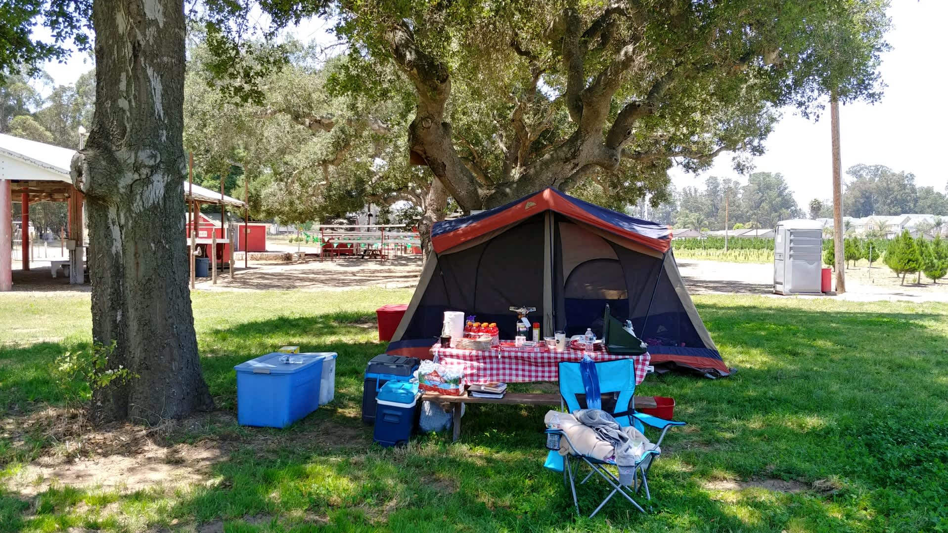 Christmas Under The Oaks.Camping Under The Oaks