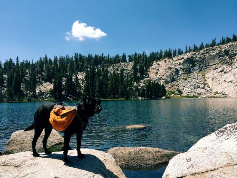 Marmot Rock Campground