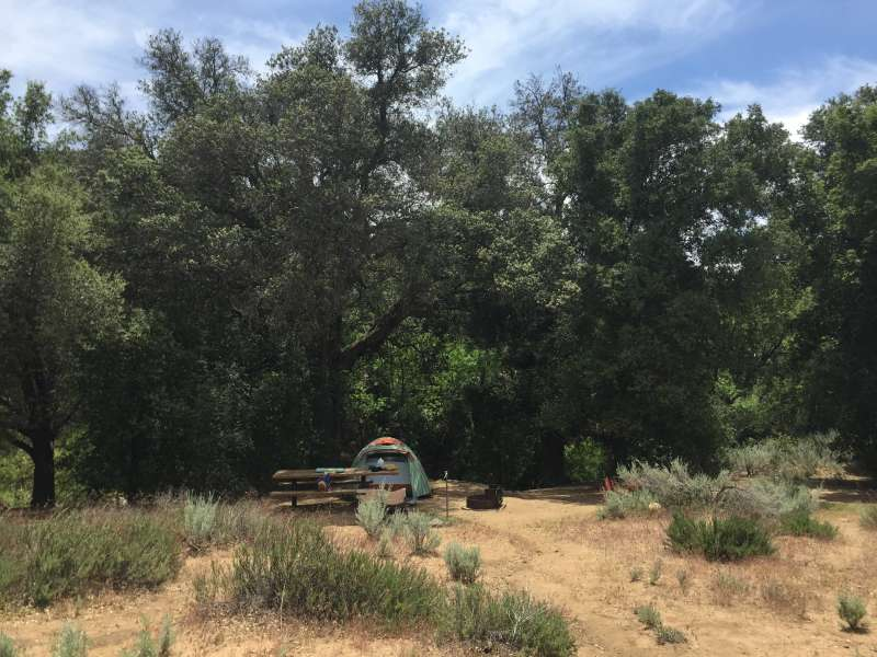 Cibbets Flat Campground, Cleveland, CA: 6 Hipcamper Reviews And 17